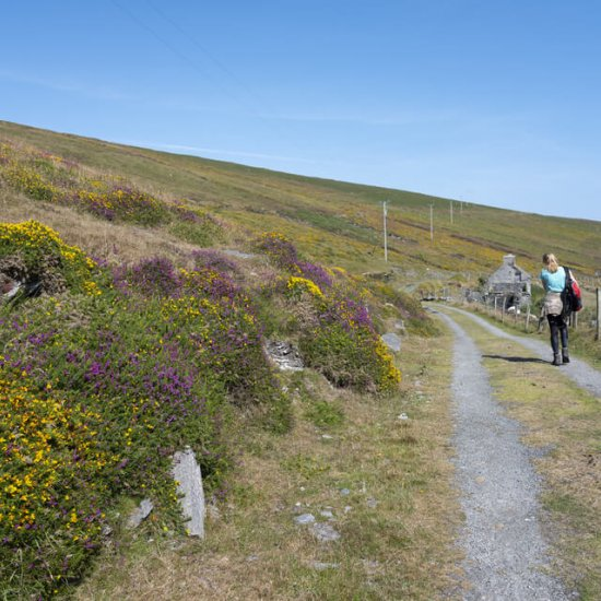 The Beara Way